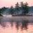 Island Big Cedar